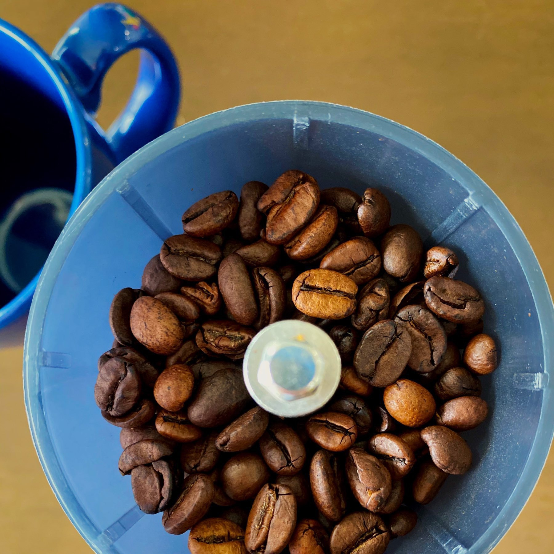 coffee beans in a coffee mill