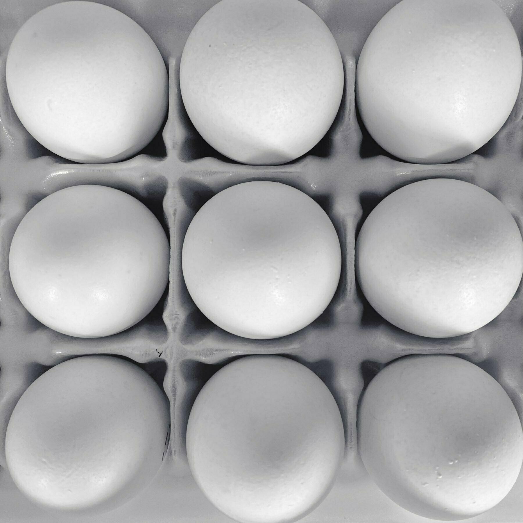 a top-down view of the inside of an egg carton